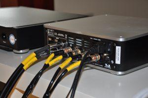 AMP 8